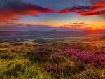 Lovely sunset