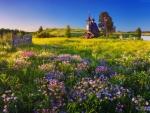 Small field church