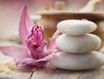 Zen Spa ♥