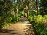 gorgeous mcclay gardens tallahassee florida hdr