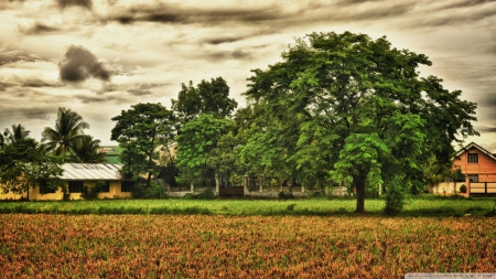beautiful rural scene hdr - farm, fields, hdr, trees, clouds