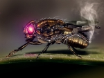 Steampunk fly