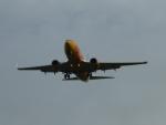 New Mexico Aircraft Livery