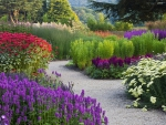 Walk in the Flower Garden