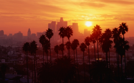 Los Angeles, California (USA) - USA, city, Los Angeles, California, cities, trvel, palms