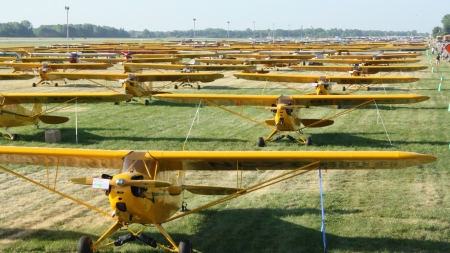 piper cub aviation club - private, grass, props, airfield, planes