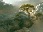 Tree Among the Clouds