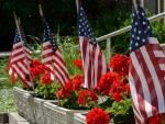 Floral Patriotism