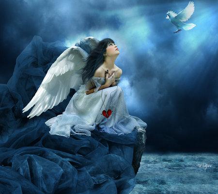 no more war - wings, blue, fairy, bird