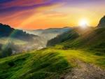 Meadow on a hillside