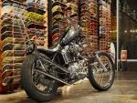 Skate Shop Harley