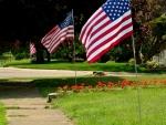 Summer Patriotism