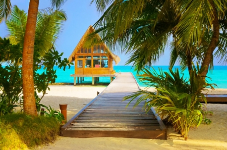 Tropical hut - pretty, hut, shore, breeze, cabin, beautiful, sea, beach, tropics, rest, vacation, lovely, ocean, wind, relax, sky, palms, paradise, nature, walk, tropical, sands, coast