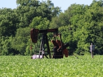 Oil Well in Field