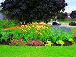 Corner garden side view #2 @ Brampton Ontario Canada