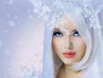 Winter Holly