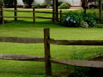Quaint Country Fence
