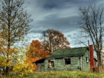 abandoned cabin in a autumn forest hdr