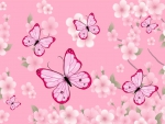 ♥~Pink~♥
