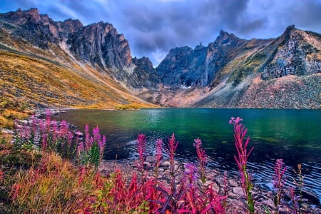 Mountain Lake, Northern Yukon Territory - autumn, grass, yellow, beautiful, clouds, lake, Canada, mountains, wildflowers, flowers, green water, pink, blue