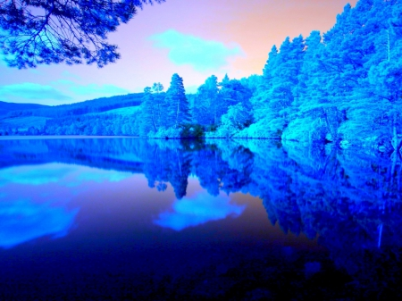 Blue Forest Silent Lake - forest, silent, nature, reflection, trees, clouds, lake, blue