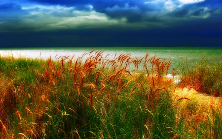 The Storm Arrives, Amrum Island - spikes, grass, beautiful, sky, clouds, sea, green, rain, Germany, yellow orange, blue