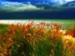 The Storm Arrives, Amrum Island