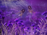 Purple Mermaids