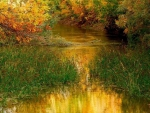 peaceful river in autumn