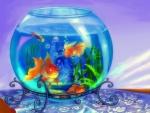 --Blue Aquarium--