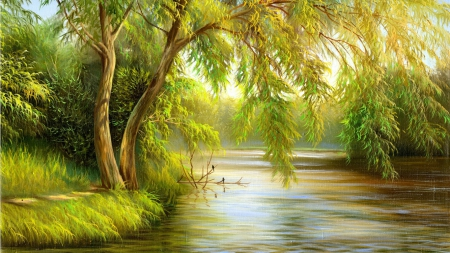 Green Trees - beautiful follage, forest, tree, riverside, greenland, greenish, bushes