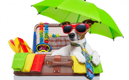 Vacation Time - pinwheels, goggles, leis, umbrella, tie, suitcase, sunglasses, flip flops, dog
