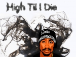 2pac - High til i die