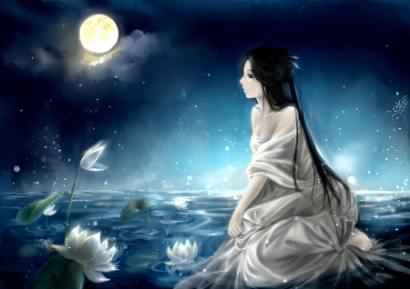 White Lotus Other Amp Anime Background Wallpapers On