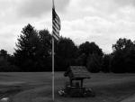 Black & White Patriot
