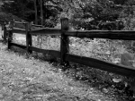 Deep Country Fence