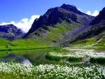 Perrin lake