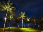Oahu Landscape