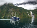 sightseeing boat in fiordland np new zealand
