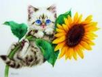 ..Sunflower Kitten..