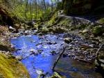 Springtime Stream at Parfreys Glen