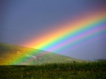 Wonderful Colored Rainbow