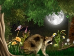 Full Moon Raccoon