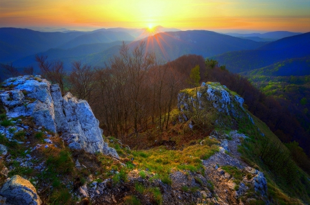 ★When Rising Sunrise★ - stunning, panoramic view, attractions in dreams, beautiful, rising, photography, landscapes, sunrise, forests, scenery, colors, love four seasons, creative pre-made, trees, mountains, plants, nature