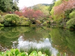 Tranquility at Buchart Gardens, BC
