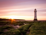 lighthouse on a moss covered beach at sunrise