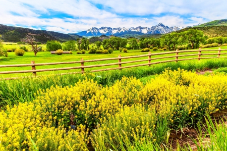 Pastoral Rest - fence, grass, yellow, beautiful, barn, farm, Colorado, green, wildflowers, nature, pasture, field, mountain range, snowy peaks