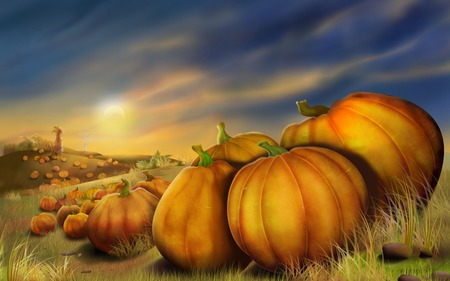 Pumpkin Field - autumn, sunset, grass, halloween, pumpkin field, pumpkins, fall, moonlight, clouds, pumpkin patch, thanksgiving, art