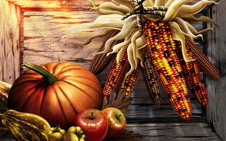 Harvest Foods - harvest, pumpkin, fruits, wooden crate, corn cobs