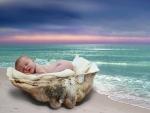 Seashell Baby